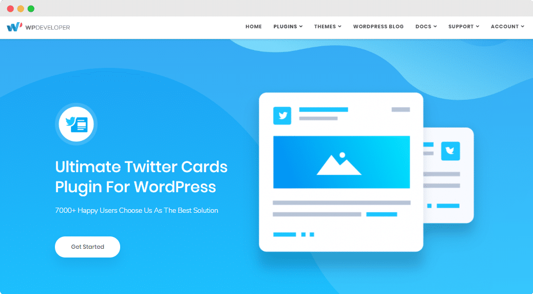 Getting The Pro Version, Pro Version, Twitter Cards Meta, WPDeveloper, WordPress