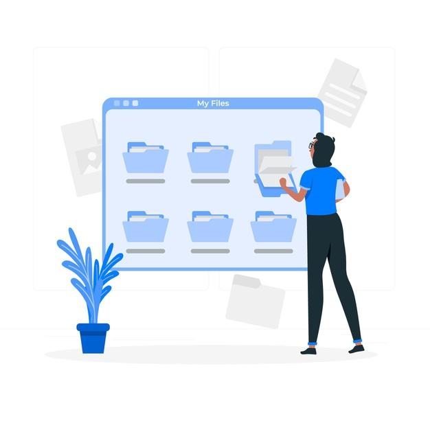 WordPress Root Directory